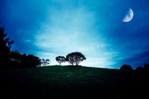 月の見える丘